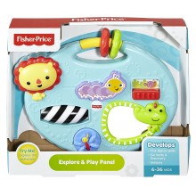 Fisher-Price Explore and Play Pane