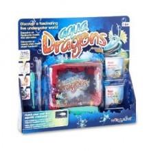 Aqua Dragons Underwater...