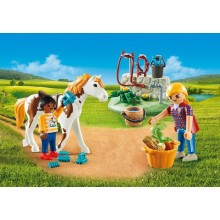 Playmobil Horse Grooming...