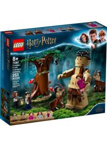 Lego Harry Potter Forbidden...