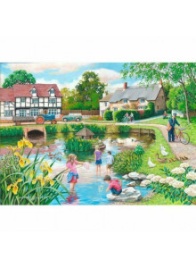 House of Puzzles Duck Pond...