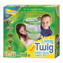 Insect Lore Living Twig Kit