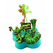 John Adams Plants with...
